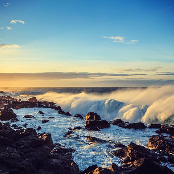 Iceland Intensive Voyage